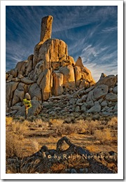 desert_pinnacle_impression_2010