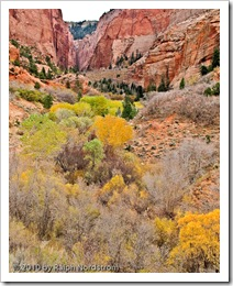 kolob_canyon_black_point_mid_tone_adj