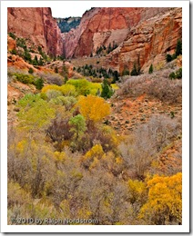 kolob_canyon_black_point
