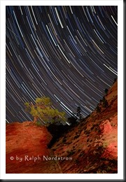 zion_night