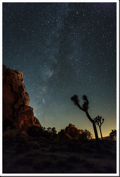 joshua_tree_140927__SM32717-Edit
