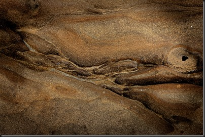 point_lobos_abstract_120809